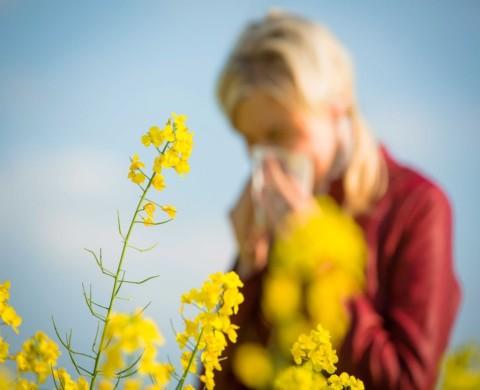 Allergy Treatment -The Mackie Clinic